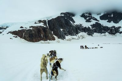 snow, winter, mountain, ice, cold, landscape, sled, dogsled