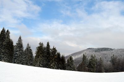 snow, winter, mountain, cold, landscape, wood, tree, hill, blue sky