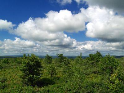 paisagem, céu, natureza, árvore, verão, atmosfera, horizonte