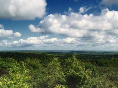paisaje, cielo, naturaleza, árbol, verano, nube, hierba, campo