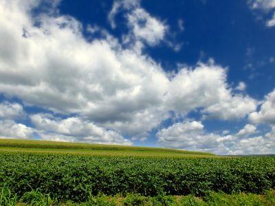 rural, agricultura, natureza, paisagem, paisagem rural, campo