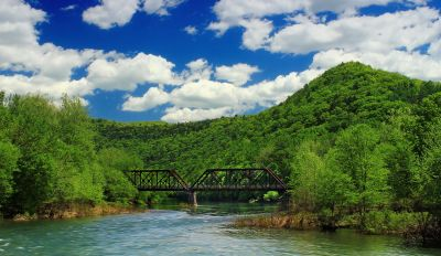 water, river, nature, wood, bridge, tree, summer, landscape