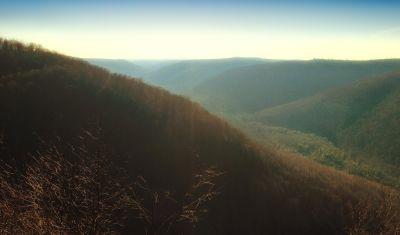 landscape, fog, dawn, hill, tree, mountain, mist, sky