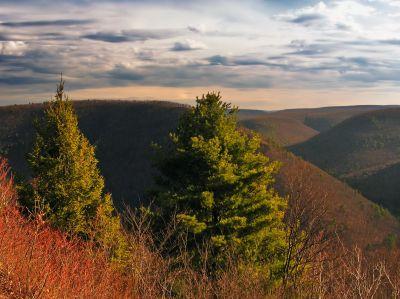 landscape, sunset, nature, tree, dawn, hill, sky, land, cloud, grass