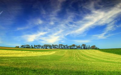 rural, grass, countryside, field, landscape, sky, hill, hillside