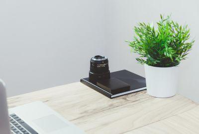 tabela, interiores, móveis, madeira, quarto, folha, mobília, flora, mesa, dentro de casa