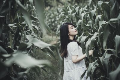 woman, field, corn, people, girl, portrait, nature, outdoor, person