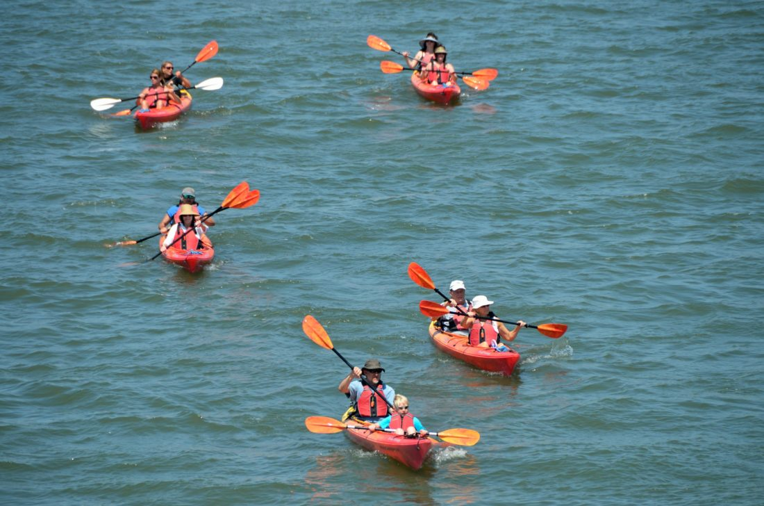 eau, bateau, sport, compétition, motomarine, course, aviron, pagaie, mer, véhicule, canoë