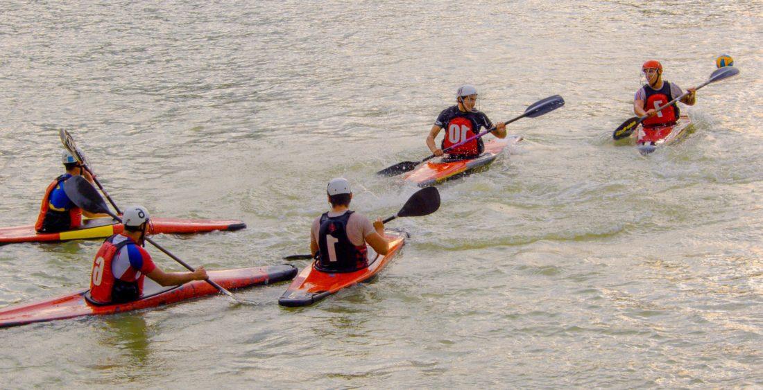 oar, canoe, competition, teamwork, kayak, people, water