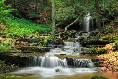 acqua, cascata, foresta, ecologia, flusso, deserto, fiume, natura, legno, foglia