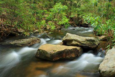 vody, vodopád, lesa, pobočky, rieka, príroda, stream, drevo, creek