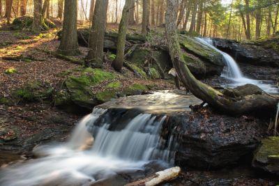 víz, vízesés, fa, gyökér, erdő, természet, patak, folyó, patak