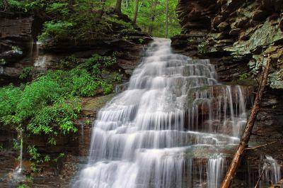 cascata, acqua, bagnato, ecologia, flusso, natura, legno, fiume, foglia