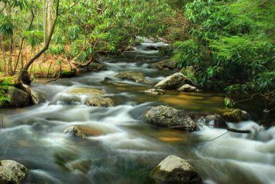 Wasser, Fluss, Fluss, Stein, Ökologie, Wasserfall, Stream, Natur, Holz, Bach