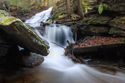 水、川、滝、森林、ストリーム、クリーク、ランドス ケープ、生態