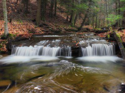eau, chute d'eau, écologie, rivière, ruisseau, nature, bois, feuille