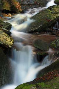 瀑布, 溪流, 水, 河流, 苔藓, 生态学, 苔藓, 小溪, 自然