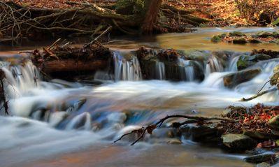 eau, chute d'eau, rivière, écologie, nature, flux, ruisseau, forêt