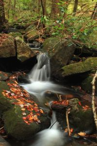 water, river, waterfall, stream, forest, stone, landscape