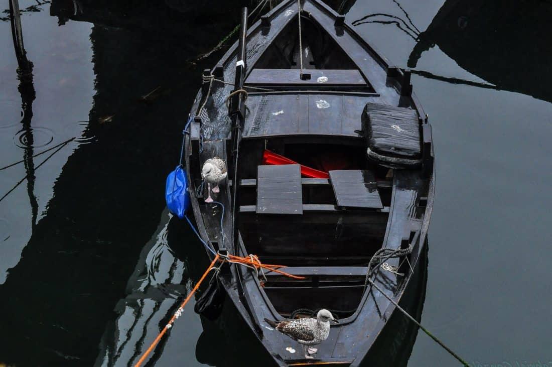 vozilo, brod, brod, Crna, prijevoz, putovanje, odraz