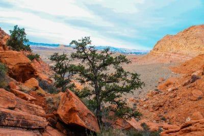 paisaje, cielo azul, erosión, piedra arenisca, naturaleza, montaña, Cañón, desierto