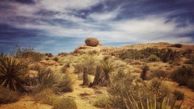 Wüste, Landschaft, trocken, Kaktus, Erosion, Tal, Himmel, Sand, Knoll, Feld