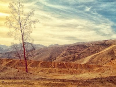 landscape, mountain, nature, sky, tree, summer, cloud, desert, outdoor