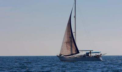 seilbåt, seil, vann, watercraft, sport, rase, vind, yacht, havet, hav