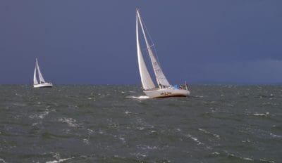 seilbåt, watercraft, vann, sport, rase, transport, seil, yacht, sjø, hav