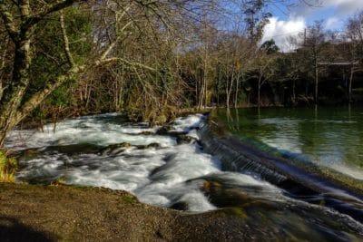 agua, río, naturaleza, flujo, paisaje, bosque, árbol
