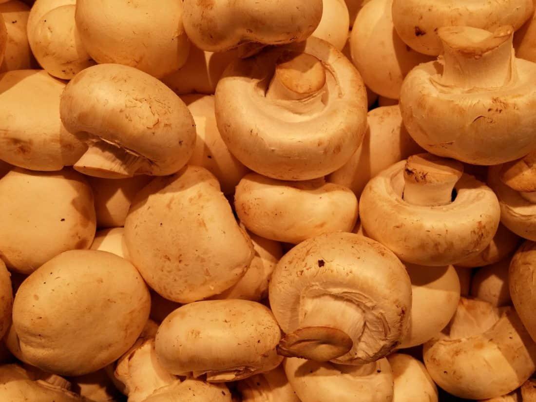 food, nutrition, vegetable, brown, eat, meal, fungus, mushroom
