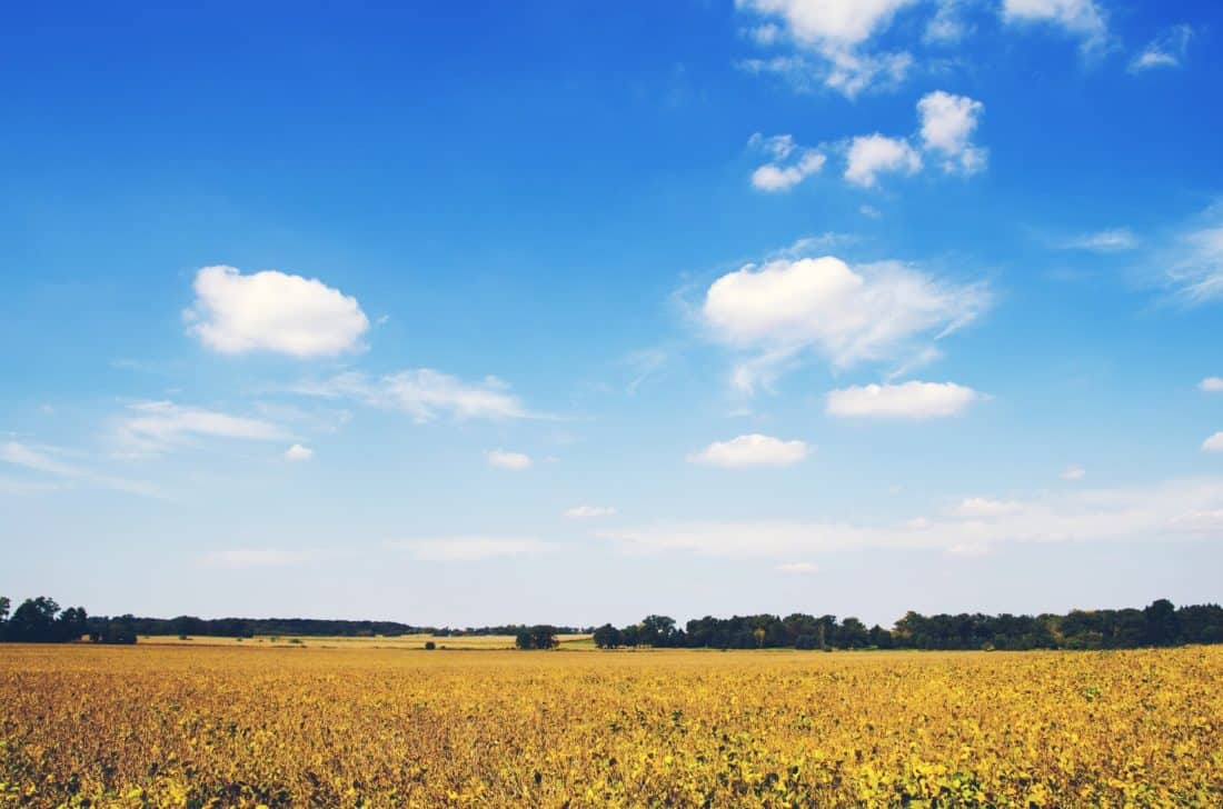 nature, landscape, sky, field, cloud, meadow, pasture, rural, countryside, agriculture