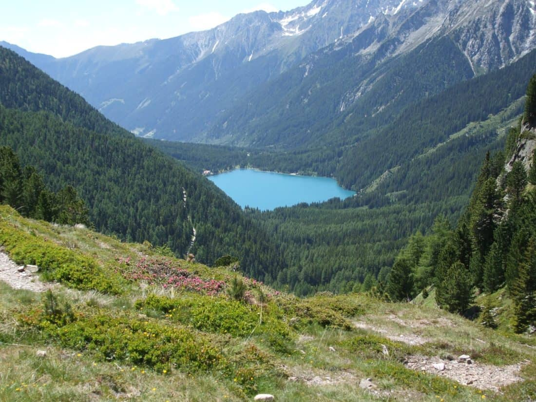mountain, lake, forest, tree, landscape, nature, valley, water, wood, sky