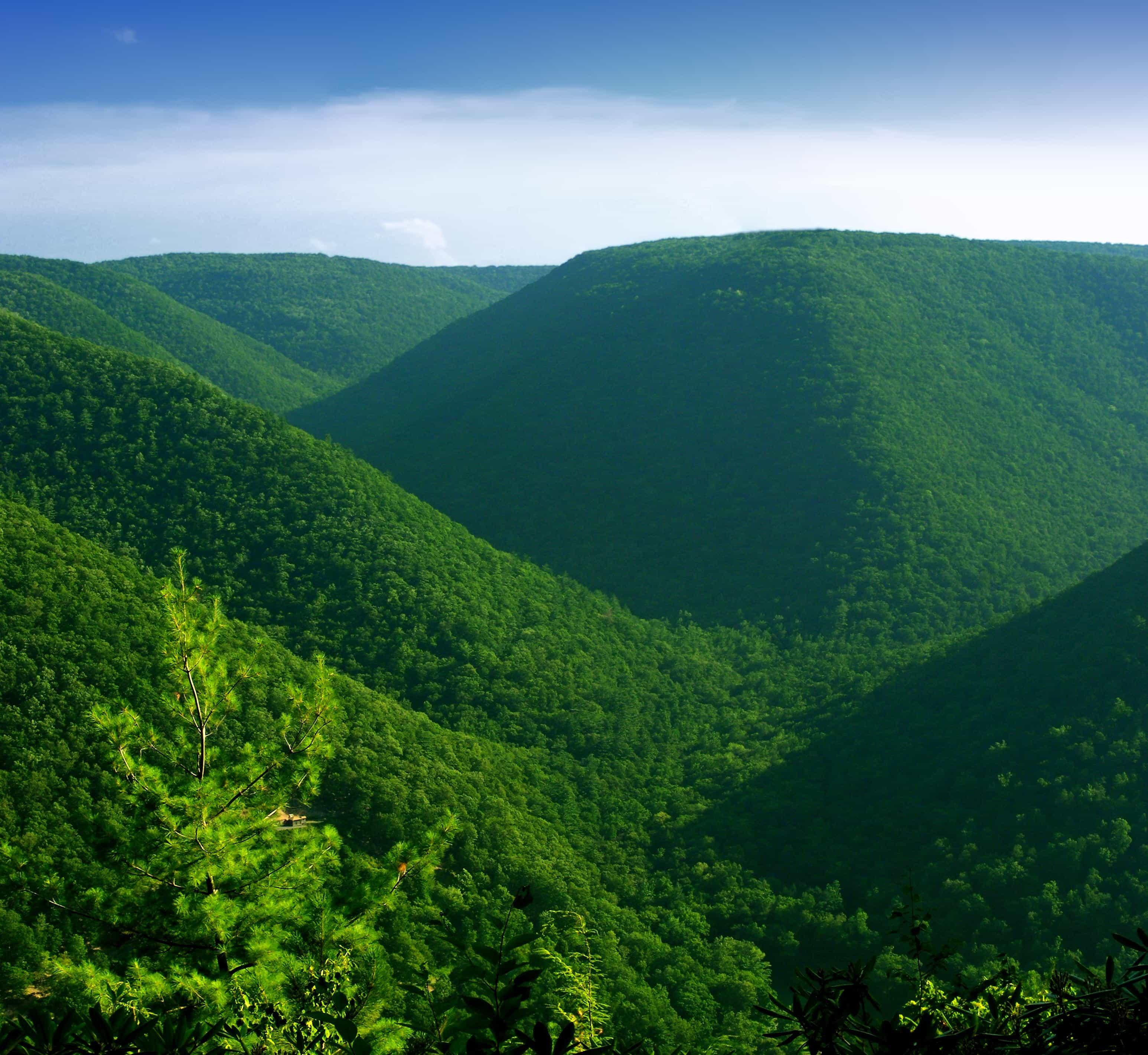 montagne paysage nature bois colline arbre ciel knoll - Arbre Ciel