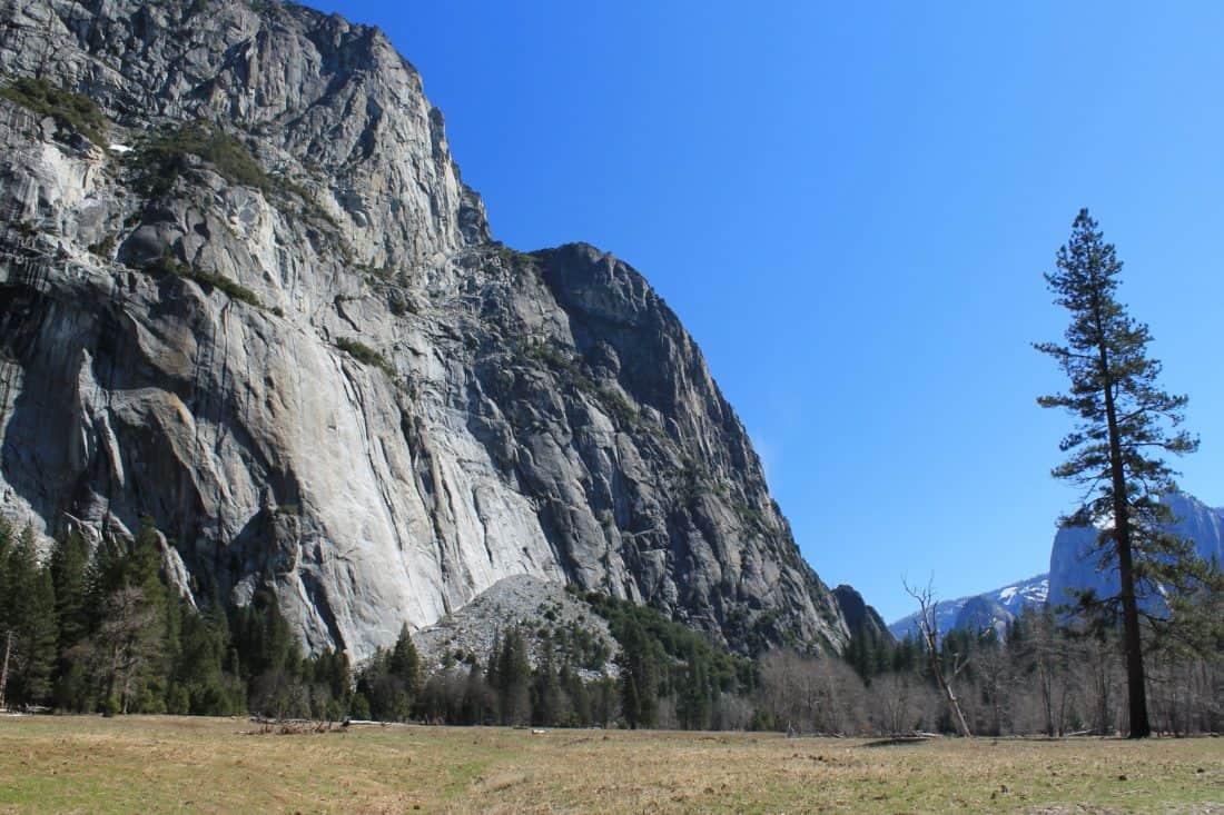 mountain, nature, blue sku, conifer, grass, landscape, tree, sky, outdoor