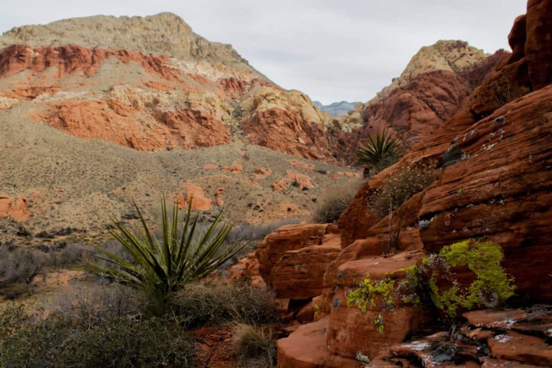 desert, landscape, erosion, sand, canyon, sandstone, nature, mountain
