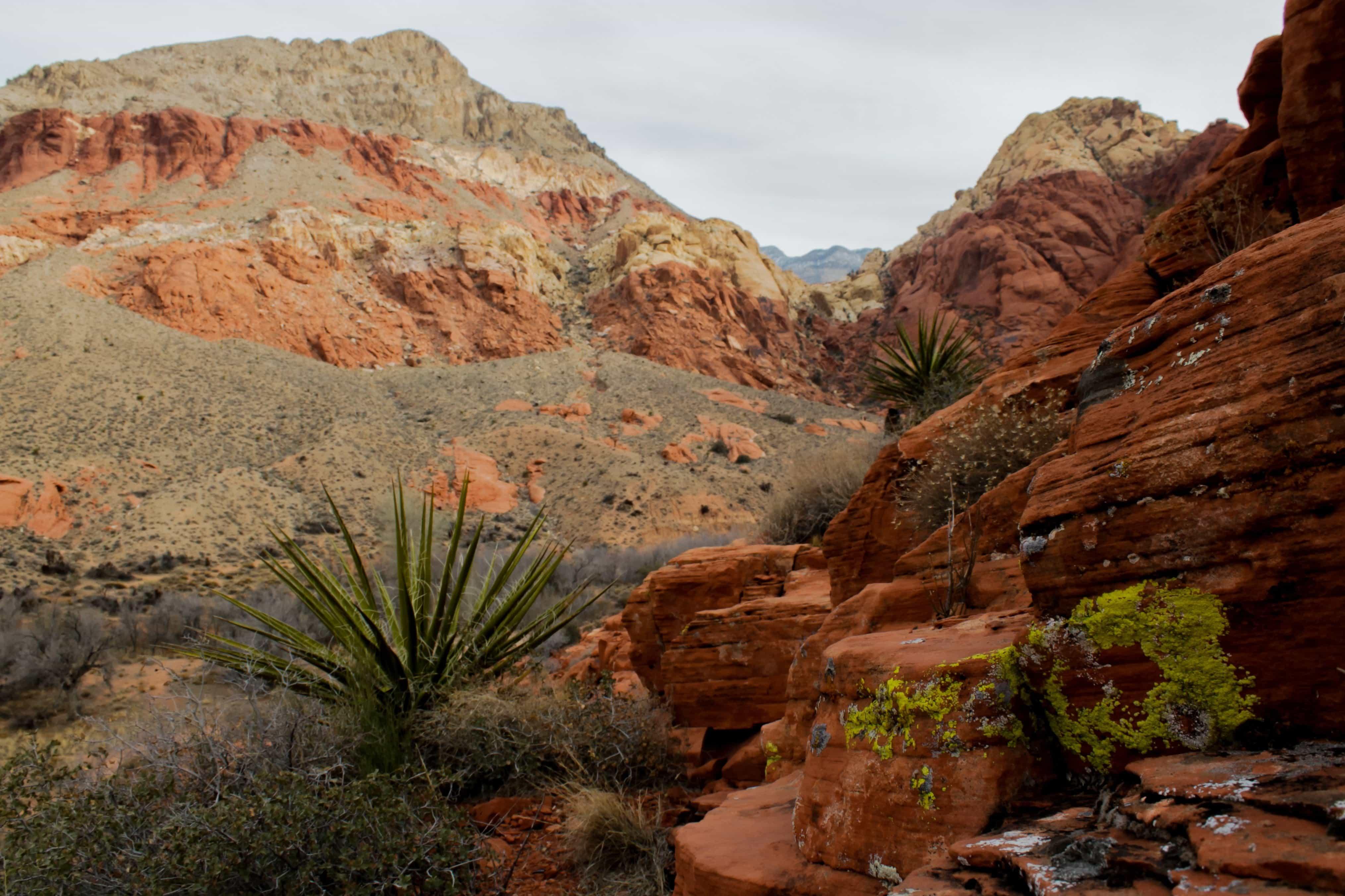 Free Picture Desert Landscape Erosion Sand Canyon