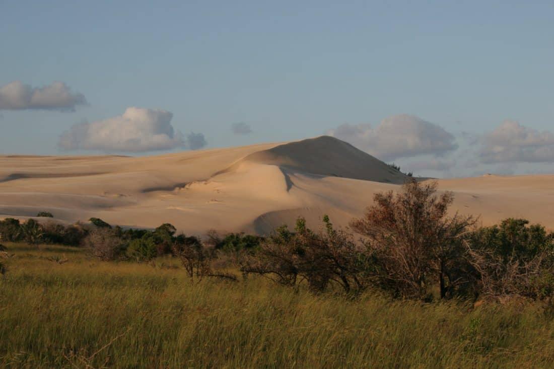 sand dune, landscape, sand, mountain, foliage, tree, blue sky, outdoor, grass, nature