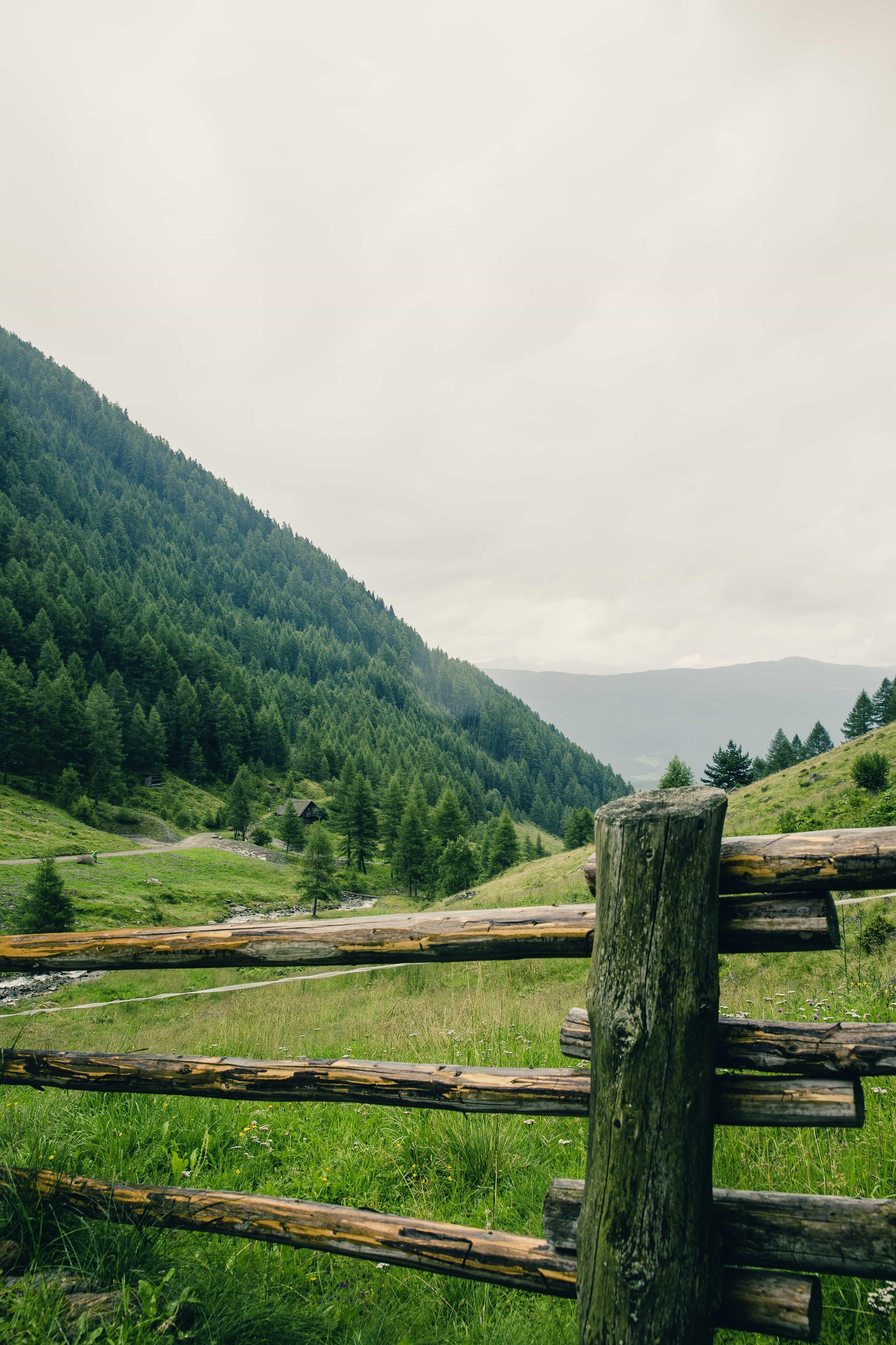 Kostenlose Bild Landschaft Weide Wiese ländlich Holz Natur