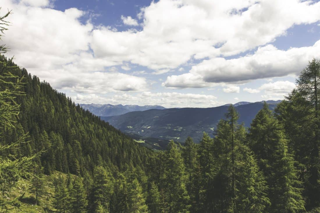 mountain, wood, nature, forest, cloud, blue sky, landscape, tree, conifer, sky