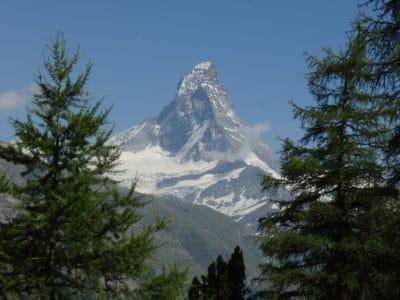 neige, sommet de montagne, géologie, conifère, persistantes, hiver, arbre, paysage