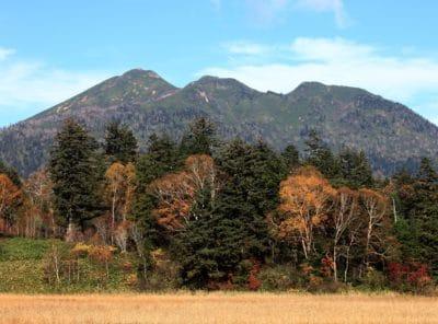 paisagem, montanha, natureza, outono, árvore, céu, madeira, pasto