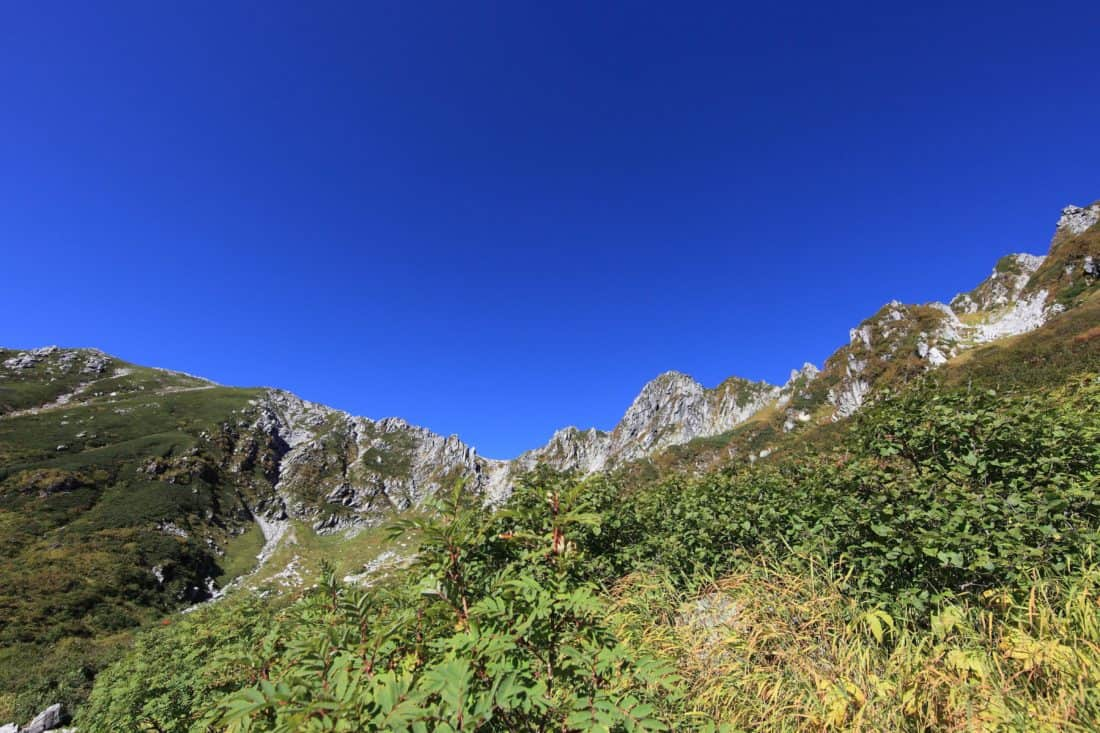 nature, mountain, blue sky, landscape, foliage, outdoor, grass