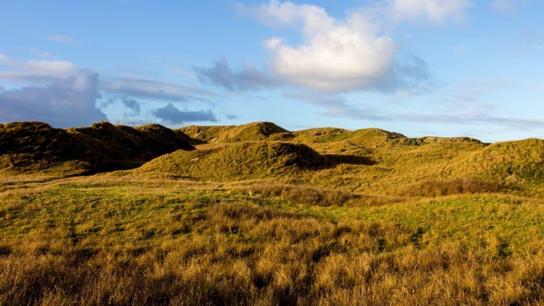 landscape, sky, nature, forest, blue sky, cloud, knoll, rural, field, grass, outdoor