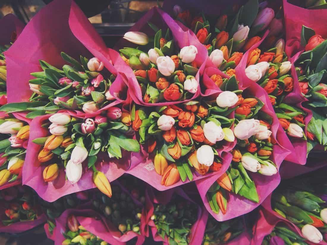 uspořádání, Tulipán, kytice, květin, rostliny, květiny, trh