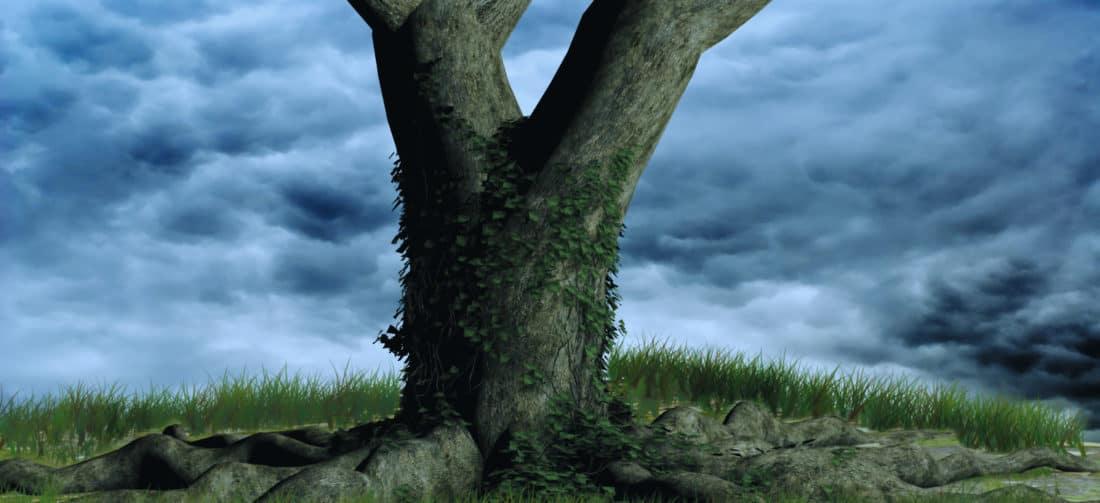 природа, небо, tre, Хмара, трава, Хмара, дерево, мистецтво, деревини, краєвид