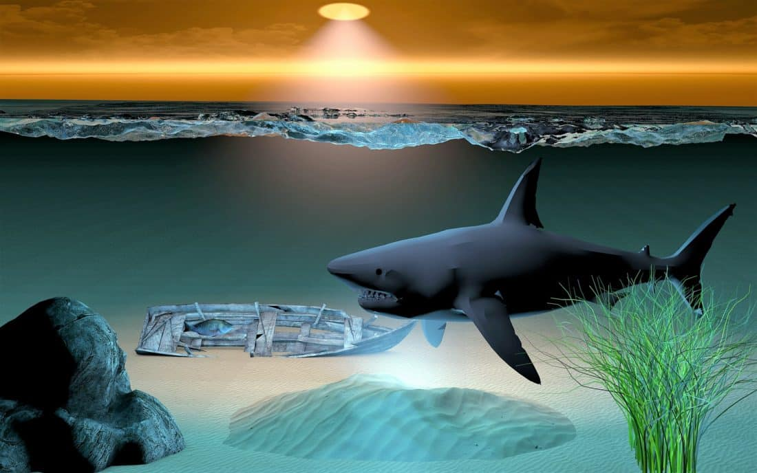 Océano, agua, mar, submarino, tiburón, tiburón, Ilustración, arte de la computadora, pescado