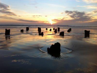 sinar matahari, matahari terbit, Pasifik, fajar, air, pantai, senja, refleksi, matahari, laut