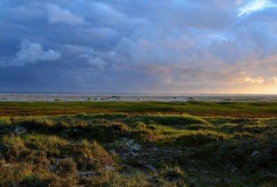 paisagem, nascer do sol, céu azul, pasto, natureza, grama, estepe, terra, atmosfera