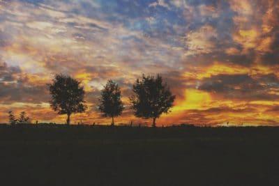 Napkelte, éjszaka, hajnalban, nap, alkonyat, silhouette, ég, légkört, szabadtéri